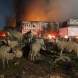 Υπό έλεγχο η μεγάλη πυρκαγιά στο εργοστάσιο της Creta Farms