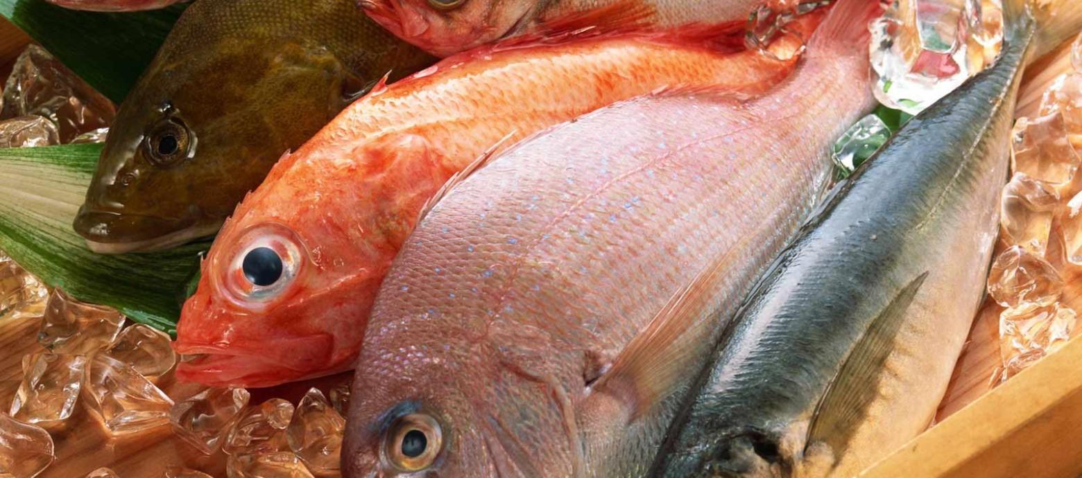 Είναι υγιεινά τα κατεψυγμένα θαλασσινά;
