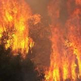 Λασίθι: Όλο το βράδυ πάλευαν με τις φλόγες οι πυροσβέστες