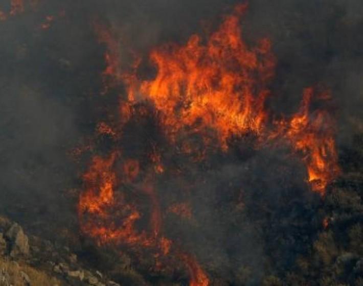 Απειλήθηκαν σπίτια από φωτιά τη νύχτα στη Λυγαριά