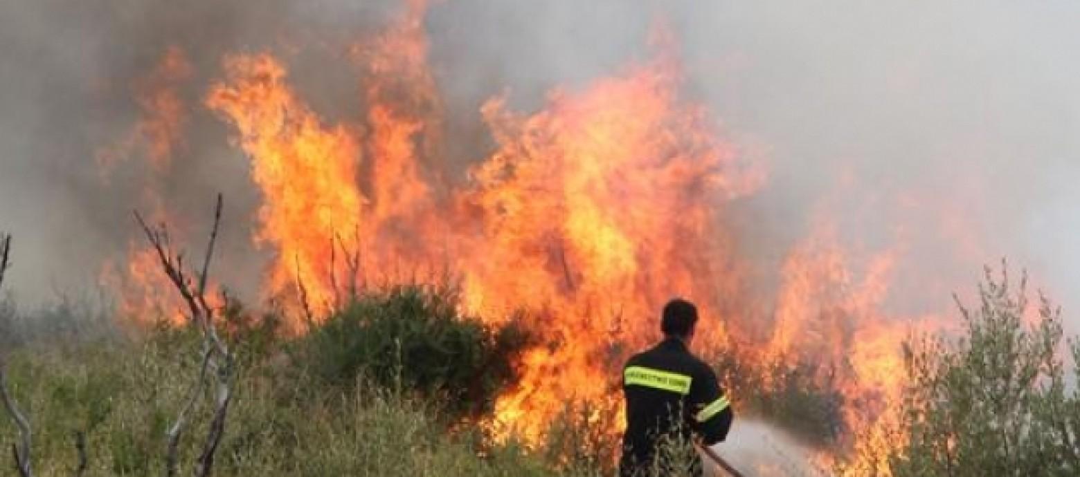Υπό μερικό έλεγχο τέθηκε φωτιά στο Ίνι