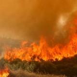 Μεγάλη πυρκαγιά στον Κουτσουρά έχει κατακάψει 700 στρέμματα