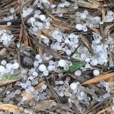 Η χαλαζόπτωση  κατέστρεψε ελιές στη Μεσαρά