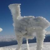 Ο ήλιος λάμπει, το τοπίο είναι τραχύ αλλά το χιόνι φτιάχνει γλυπτά στον Ψηλορείτη(φωτογραφίες)