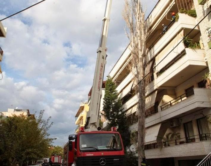 Ηράκλειο: Δέντρο 30 μέτρων έπεσε σε πολυκατοικία
