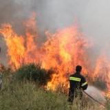 Φωτιά σε δασική περιοχή στο Ρέθυμνο