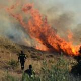 Υπό έλεγχο η φωτιά στην Κίσσαμο Χανίων
