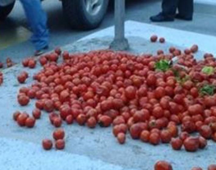 Τυμπάκι: Αγρότες σε ένδειξη διαμαρτυρίας πέταξαν ντομάτες