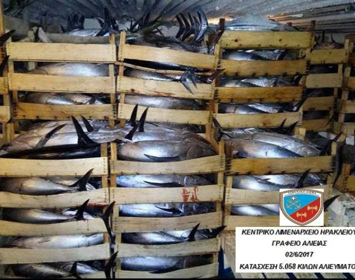 Κατάσχεσαν 5 τόνους ψάρια σε αλιευτικό στους Καλούς Λιμένες