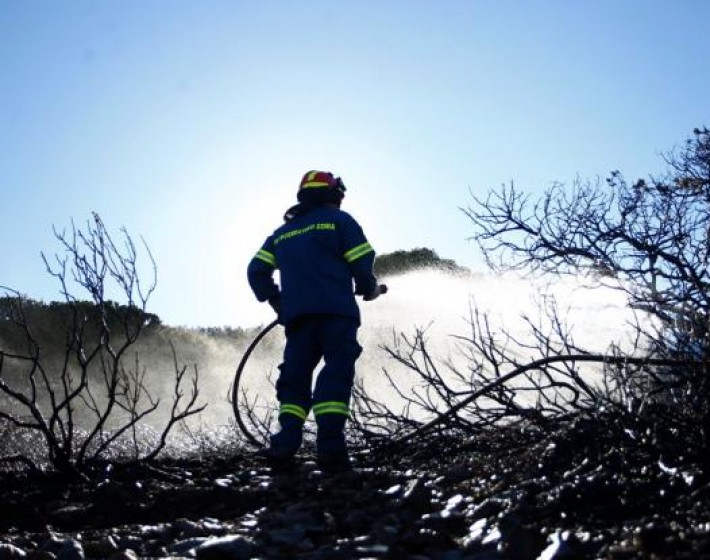 Θλιβερός απολογισμός από την φωτιά στην Ανατολή Ιεράπετρας